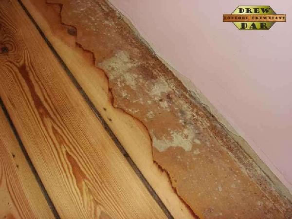 Renowacja Deski Spod Farby Olejnej Z Wykończeniem (cyklinowanie) Drew-dar 5